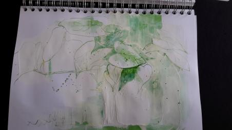 sketchbookplant03